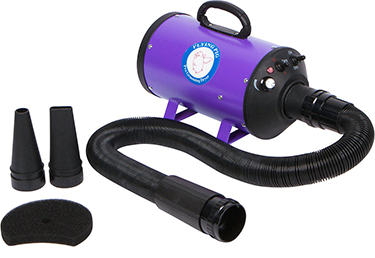 Flying Pig Grooming dog and cat dryer