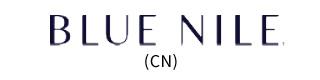 Blue Nile China logo